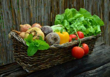 Fresh, organic farm-to-table produce